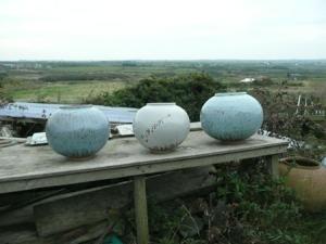 Pots in landscape
