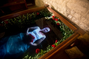 Ophelia's Ghost © Kristin and Davy McGuire, photograph by Electric Egg
